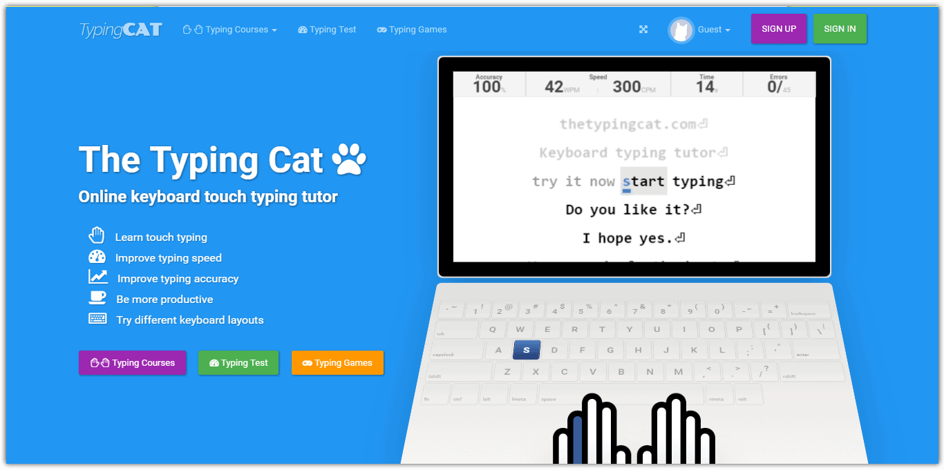 typinc cat best typing tutor site